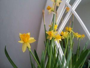 Весна!. Ярмарка Мастеров - ручная работа, handmade.